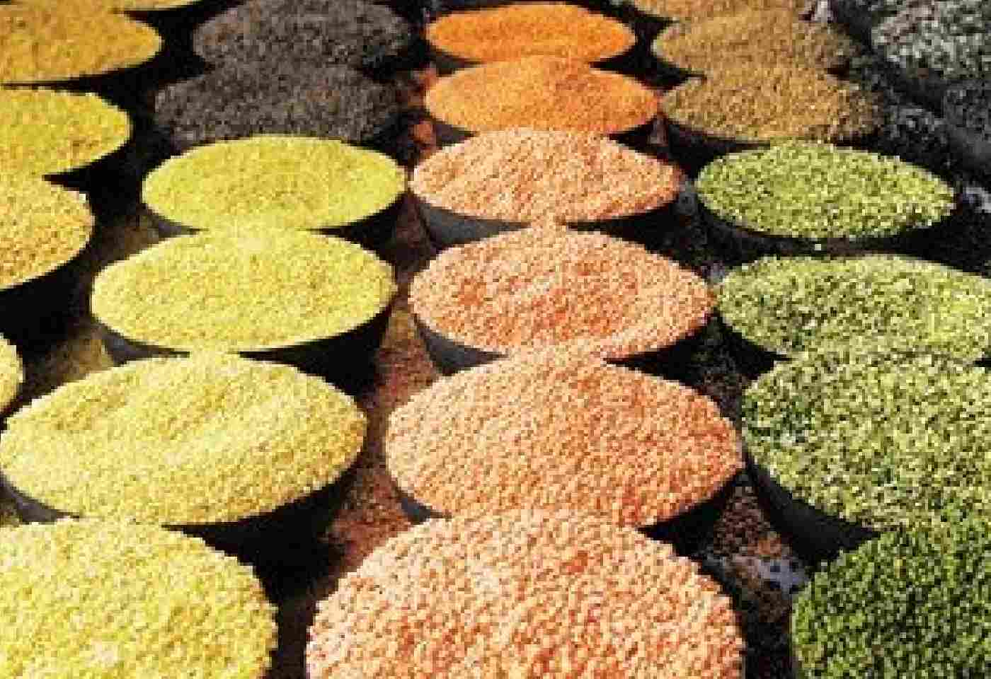 Central Govt Allows free import of Three types of pulses Ahead Of New Kharif Season