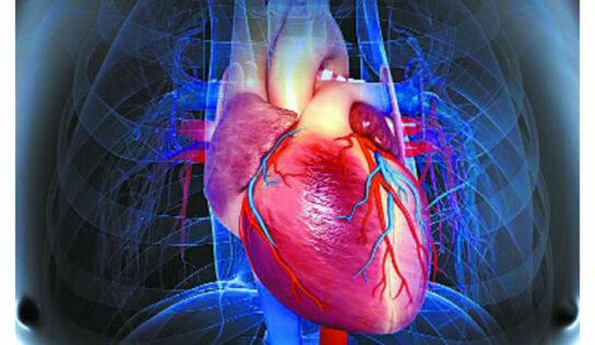 हृदय सांभाळण्यासाठी कमीत कमी बसा