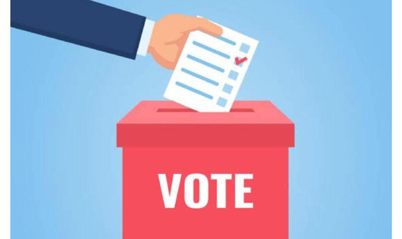 राज्यसभेच्या पोटनिवडणुकीसाठी भाजपचे निलंबित १२ आमदार चक्क करणार विधान भवनाबाहेरून मतदान